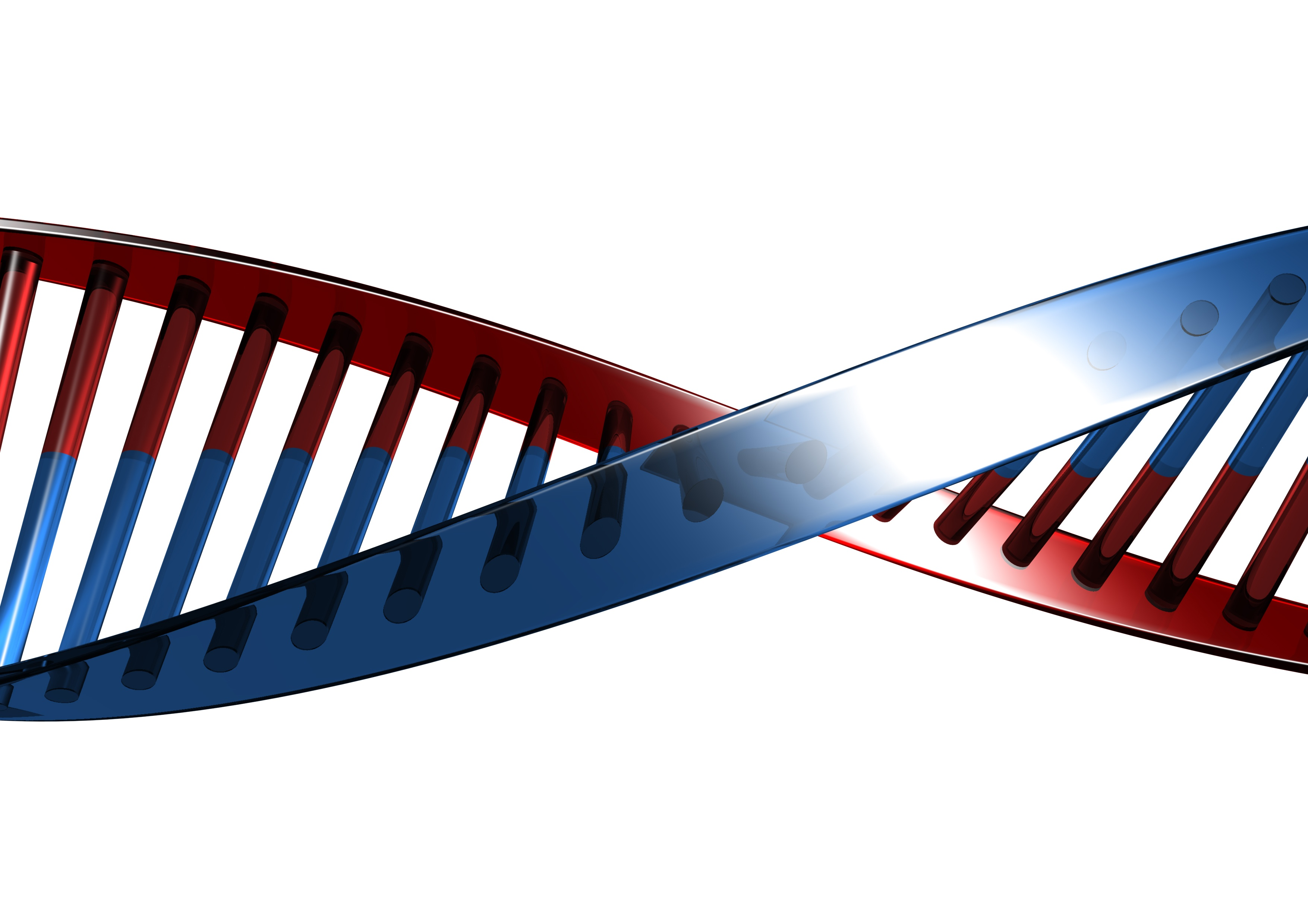 Are Genes Responsible for Food Allergies?