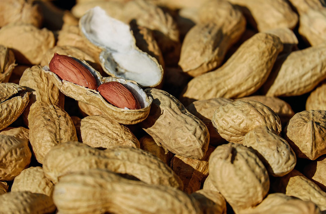 Gene Therapy Study Protects Against Peanut Allergy